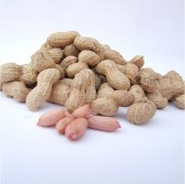 干花生(Dried Peanuts)