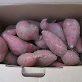 大紫丫有机红薯(Organic sweet potato)
